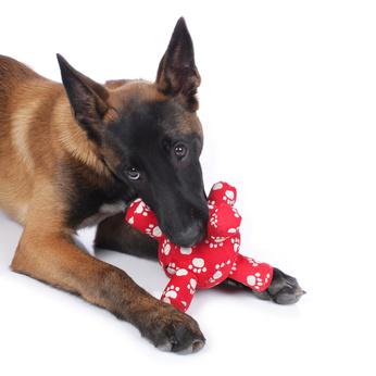 Hundespielzeug Schäferhund